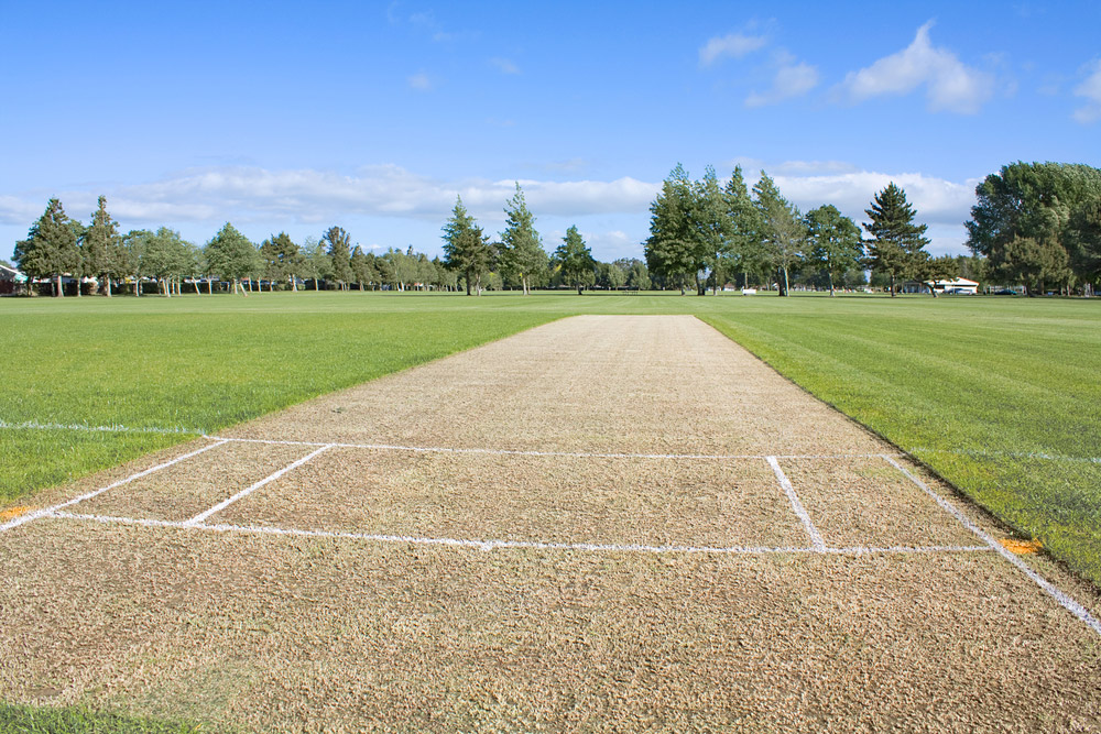 The Proposed Turf Wicket